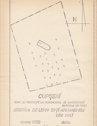 cupseni-sfilie-arhivadjc-web04