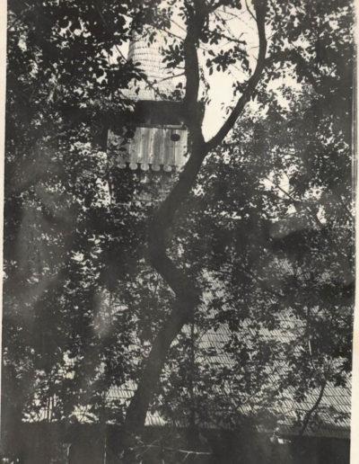 lapus-1963-mjia-web03