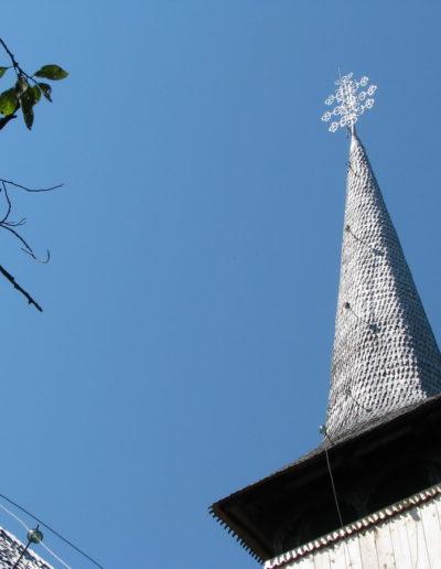 rogoz-cuvioasa-paraschiva-2008-mjia-7
