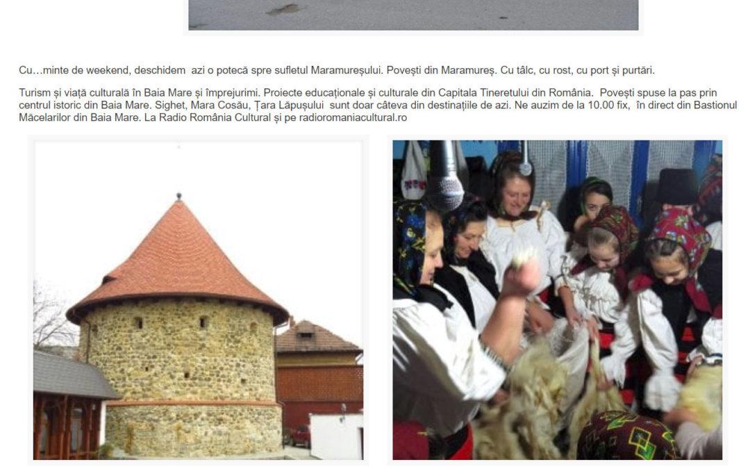 Despre proiectul nostru la Radio România Cultural
